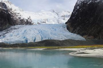 Balmaceda and Serrano Glaciers Sightseeing Cruise