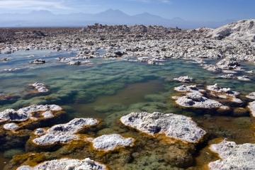 Excursão ao Salar de Atacama e Toconao saindo de San Pedro