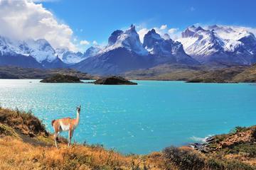 Excursión de día completo al Parque Nacional Torres del Paine desde...
