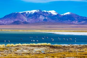 Viagem de Um Dia ao Salar de Atacama, saindo de San Pedro de Atacama...