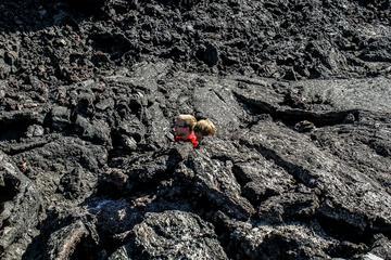 Lake Myvatn Volcanic Lava Hike from...