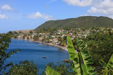 Dominica Shore Excursion: Roseau City...