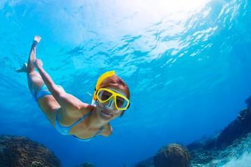 Full-Day Snorkeling Tour