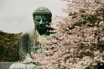Tour privado de Kamakura y Yokohama...