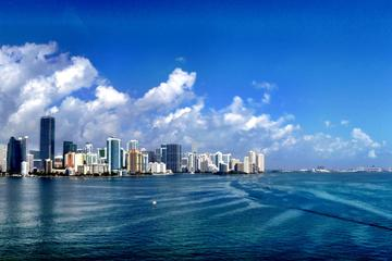 Citytour Miami Private from Port or Hotel Miami or Fort Lauderdale