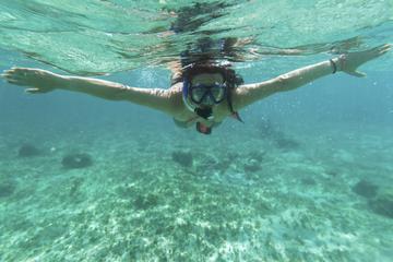 Aventura de buceo de superficie en...