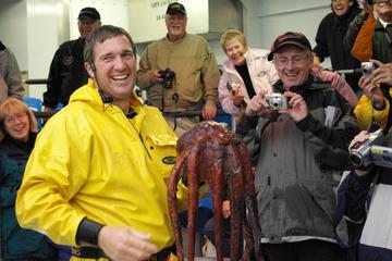 Excursión de pesca de cangrejos en el mar de Bering desde Ketchikan