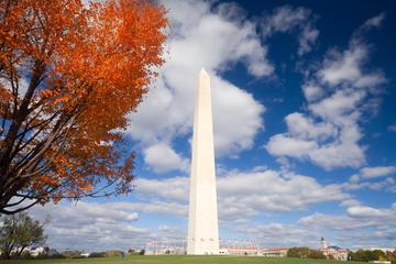 Exklusivt för Viator: Rundtur med reserverat inträde till Washingtons ...