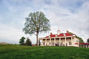 Mount Vernon and Old Town Alexandria Tour