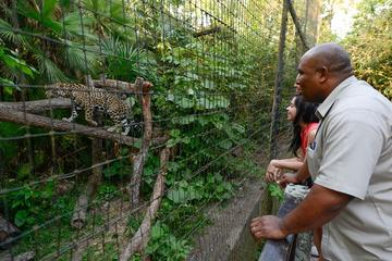 The Belize Zoo Admission Tickets