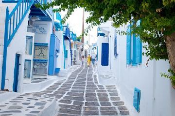 Recorrido de mediodía por la ciudad e isla de Mykonos