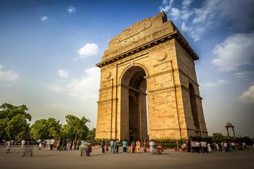 Giro della città di Delhi per l'intera