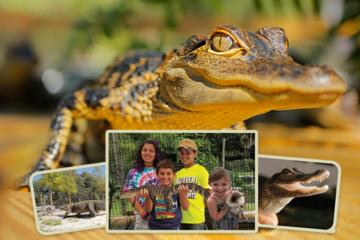GatorWorld Parks Single Day Admission