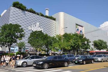 ベスト オブ ソウル ショッピングツアー