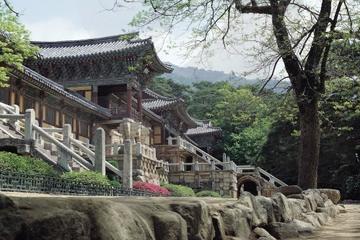 Excursión de 2 días para conocer el patrimonio de Silla de Gyeongju...