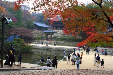 Recorrido cultural por la mañana: lugares Patrimonio de la Humanidad...
