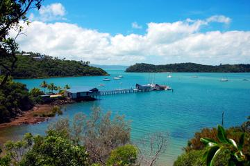 Shared Departure Transfer: Airlie Beach or Shute Harbour Hotels to...
