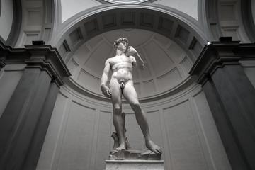 Excursión guiada por la Galería de la Academia con entrada que le...