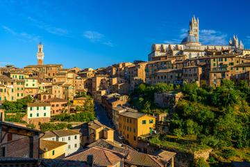 Excursión privada a la Toscana desde Florencia que incluye Siena, San...