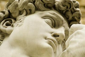 Florence Sightseeing Tour with Accademia Gallery Visit