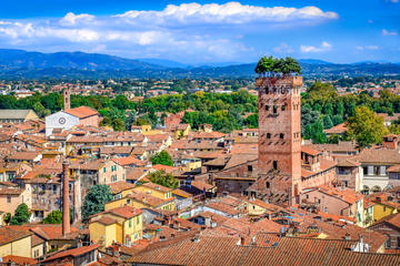 Full-Day Private Pisa and Lucca Tour from Florence