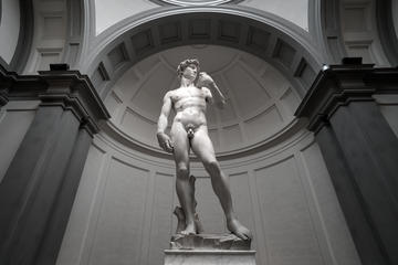 Skip the Line: Accademia Gallery Guided Tour in Florence