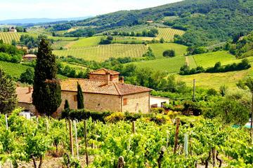 Tour van Florence naar Greve in Chianti met wijnproeverij
