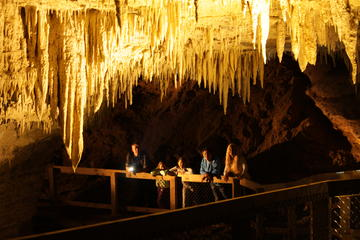 Visite de la grotte des vers...