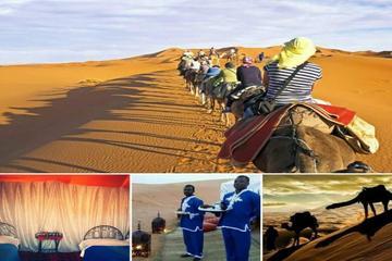 Express Desert tours from CASABLANCA