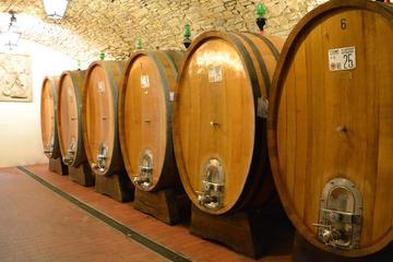 Excursão de dia inteiro pelas vinícolas em Bolonha