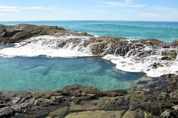 Tour di 5 giorni di Fraser Island e della Grande barriera corallina