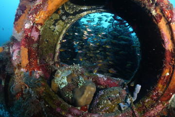 Scuba Diving in Tulamben