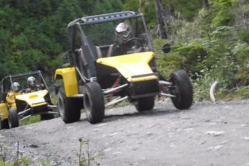 Ketchikan Shore Excursion: Off-Road Adventure Tour