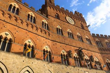 Private Tour of the Civic Museum in Siena