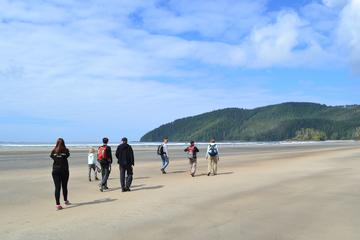San Josef Bay Tour
