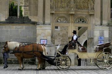 Tour privado: Versalles paseo en coche de caballos