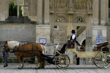 Visite privée : Versailles en calèche