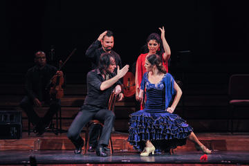 Esibizione di opera e flamenco presso il Teatre Poliorama o il Palau