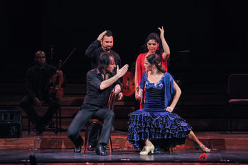 Opera and Flamenco Performance in Barcelona