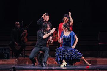 Ópera e apresentação de flamenco em Barcelona no Teatre Poliorama ou...