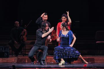 Ópera y espectáculo de flamenco en el Teatro Poliorama o Palau de la...