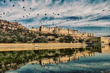 Full day sightseeing Jaipur