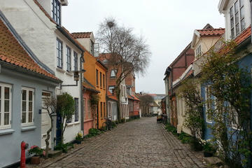 Aarhus Private Walking Tour