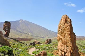 Excursión por la costa de Tenerife...