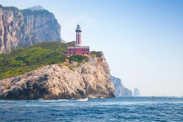 Tour privato: crociera da Sorrento a Capri