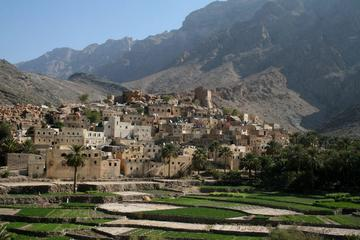 Private Tour: Wadis and Mountains