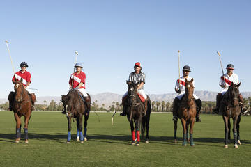 Argentina Polo Match and Lesson from Buenos Aires