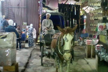 City tour by horse carriage