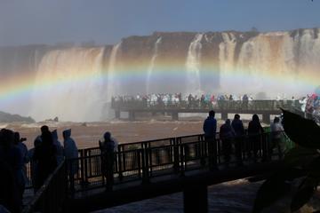 Itaipu Dam & Bird Park & Iguassu Falls Brazilian Side - Private Tour