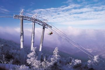 2-Day PyeongChang Ski and Cultural Tour Package